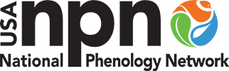 NPN Logo